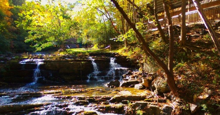 Forthcoming Fall Plans In The Smokies 2020
