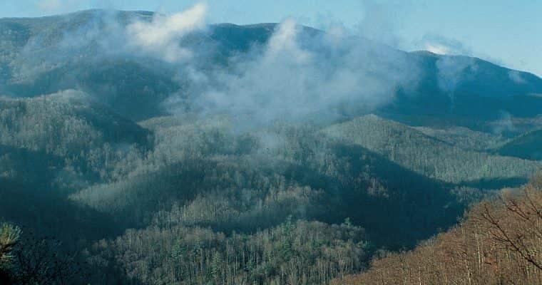 Important Smoky Mountain Travel News – May 9th